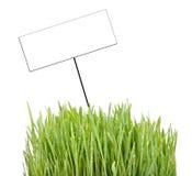 Card and grass Stock Photos