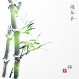 Card with green bamboo in sumi-e style. Royalty Free Stock Images