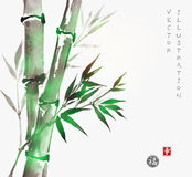 Card with green bamboo in sumi-e style. Royalty Free Stock Photography