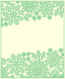 Card. Green Lace. Stock Photography