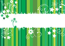 Card with green lines and flowers. Card with green lines and white flowers Royalty Free Stock Images