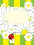 card hälsningsnyckelpigawth Arkivbild
