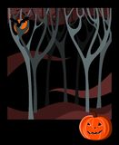 Card for Halloween holiday. Night forest, moon, bat and pumpkin. Stock Image