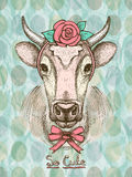 Card with hand drawn cute fashion cow. Stock Photos
