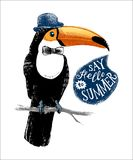 Card with hand drawn toucan hipster. Card with hand drawn dressed up toucan hipster with phrase say hello to summer. Can be used as greeting card, placard Royalty Free Stock Images