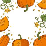 Card with hand drawn pumpkins. vector illustration