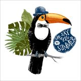 Card with hand drawn toucan hipster. Card with hand drawn dressed up toucan hipster with phrase say hello to summer and tropical leaves. Can be used as greeting Stock Image