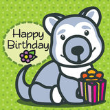 Card. Happy Birthday. Haski dog. Stock Photography