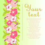 Card with with hibiscus flowers and leaves Royalty Free Stock Images