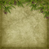 Card for the holiday with branches Royalty Free Stock Image