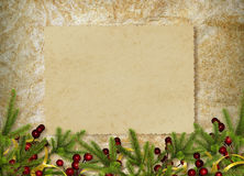 Card for the holiday with branches and berry. On the abstract background Stock Photos