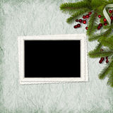 Card for the holiday with branches and berry Royalty Free Stock Photos