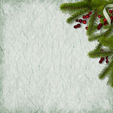 Card for the holiday with branches and berry. On the abstract background Royalty Free Stock Photos