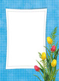 Card for the holiday with flower Stock Photography