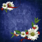 Card for the holiday with flowers and ribbons. Card for the holiday  with flowers and ribbons on the abstract background Royalty Free Stock Photo