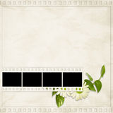 Card for the holiday  with plant and  flowers. On the abstract background Royalty Free Stock Images