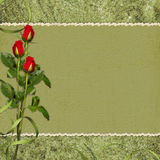 Card for the holiday red rose. Vintage card for the invitation or congratulation with red rose Stock Images