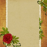 Card for the holiday with red rose. Vintage card for the invitation or congratulation with red rose Stock Images