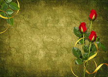 Card for the holiday with red rose Royalty Free Stock Images