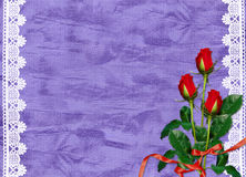 Card for the holiday with roses and ribbons. Violet card for the holiday with roses and ribbons Stock Image
