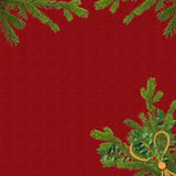 Card for the holiday with spruce branches. Claret card for the holiday with spruce branches Stock Photos