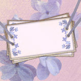 Card for the invitation. With ribbons and rivets, floral background Stock Photo