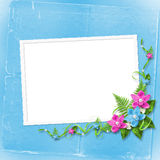 Card for invitation with blue and pink orchids Stock Image