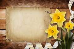 Card for invitation with bouquet of flowers narcissus Royalty Free Stock Photography