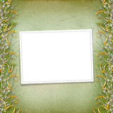 Card for invitation with bunch of willow Stock Image