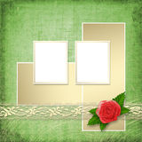 Card for invitation with buttonhole Royalty Free Stock Images