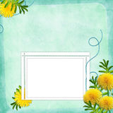 Card for invitation or congratulation with flowers Royalty Free Stock Photography