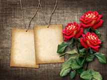 Card for invitation or congratulation with red roses Stock Photo