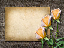 Card for invitation or congratulation with yellow rose. In vintage style Royalty Free Stock Photo