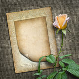 Card for invitation or congratulation with yellow rose Royalty Free Stock Images