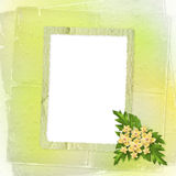 Card for invitation with orchids and twigs Royalty Free Stock Photos