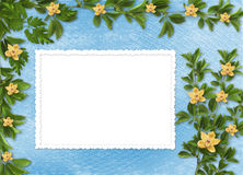 Card for invitation with orchids and twigs Royalty Free Stock Photography
