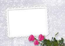 Card for  invitation with pink roses Stock Images