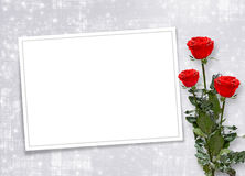 Card for invitation with red roses Royalty Free Stock Images