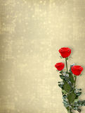 Card for invitation with red roses Royalty Free Stock Photos