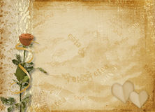 Card for invitation with rose and lace Royalty Free Stock Photos