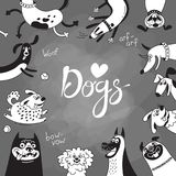 Card with joyful dogs and happy puppies. Vector background with mongrels, sheepdog, dachshund, lap-dog and others breeds.  vector illustration