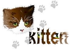 Card with a kitten. 01 (Vector) Royalty Free Stock Images