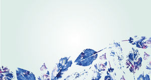 Card from the leaves of the trees. Beautiful card from the leaves of the trees are painted soft watercolor Stock Photo
