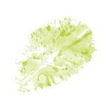 Card with a lettuce leaf Stock Photos