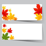 Card with maple autumn leaves Stock Photo