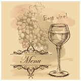 Card, menu with sketch grapes, wine Stock Photography