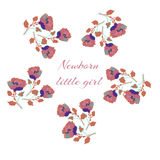 Card for Newborn baby girl, roses frame. Vector. Illustration for print Royalty Free Stock Images
