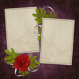 Card from old paper on the abstract background. Vintage card from old paper and rose on the abstract background Royalty Free Stock Images