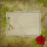 Card from old paper on the abstract background. Vintage card from old paper and rose on the abstract background Royalty Free Stock Photography