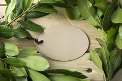 Card oval, branches Royalty Free Stock Photos